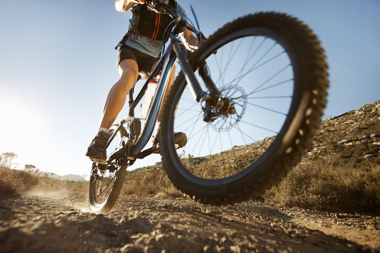 Case study: Cairns Mountain Bike Championships